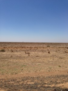 hay plains jan 2014.